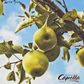 Capella Green Apple, a tangy apple
