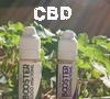 All you need to know before vaping CBD (cannabidiol)